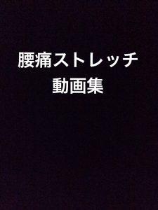 腰痛 ストレッチ動画全集