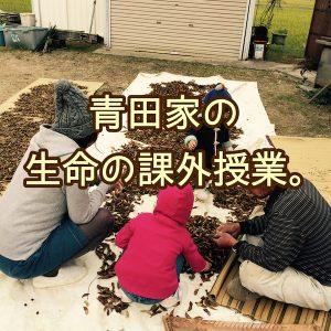 青田家の生命の課外授業