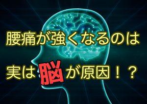 腰痛がきつくなるのは「脳」が原因!?