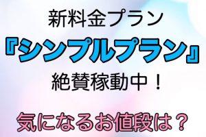 【新料金プラン】絶賛稼働中!