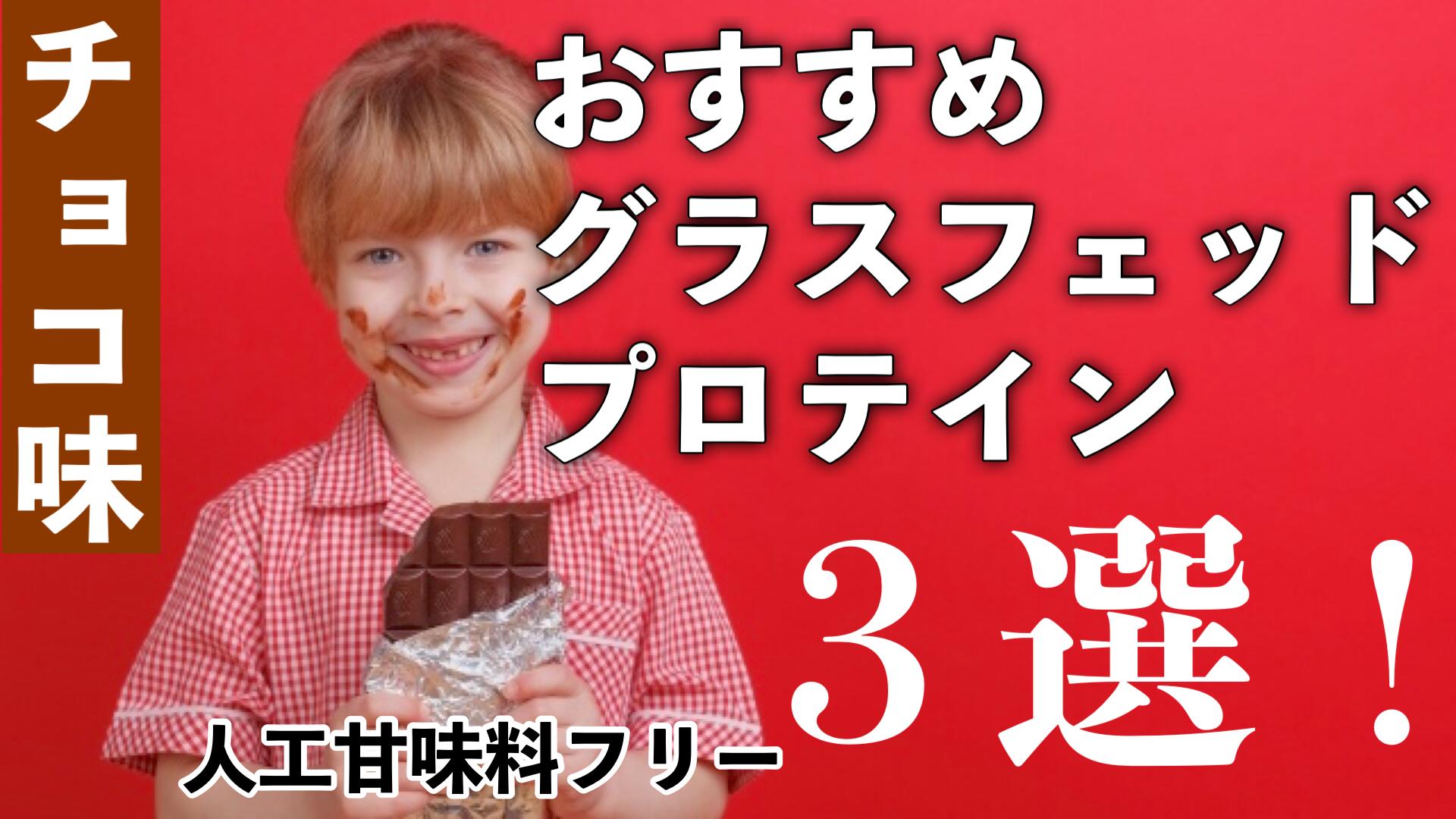 チョコ好きのためのオススメ【グラスフェッドプロテイン】カカオ味3選!